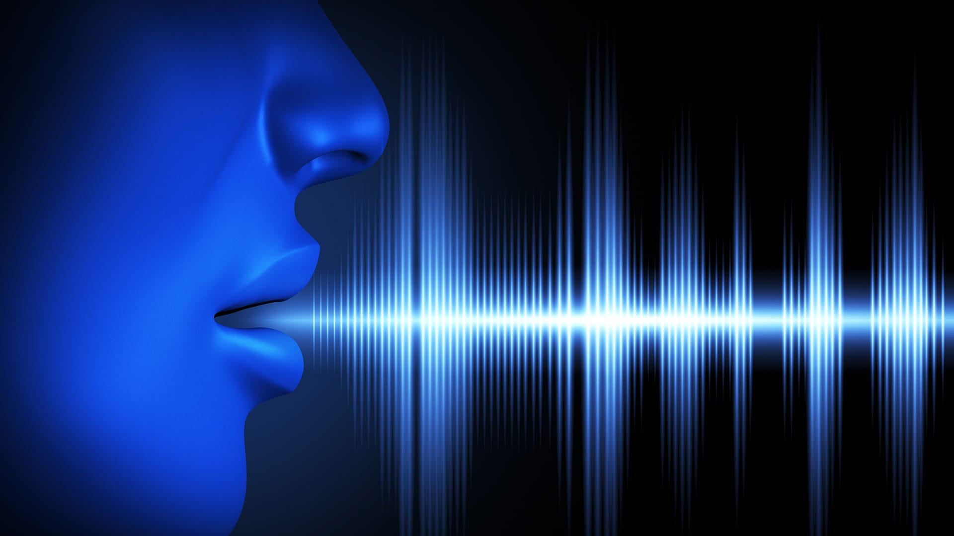 public speaking voice