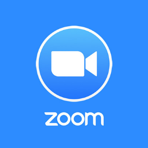 be professional in zoom meetings